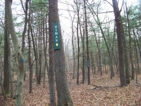 Diman trail marker in Holbrook