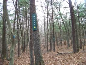 Diman trail marker in Holbrook