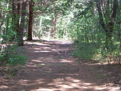 trail to x country ski in rockland