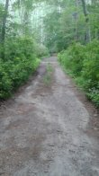 dirt road at stetson meadows in marshfield