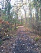 trail near whitman hanson high school