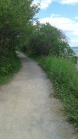Gravel hiking trail at Webb Memorial State Park.