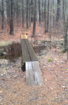 double planks through a wet area at melzar hatch reservation