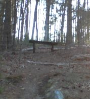 bench at ellis nature sanctuary