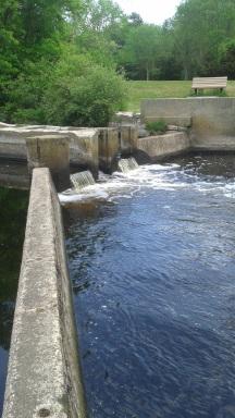 fishing spot at tuckers preserve