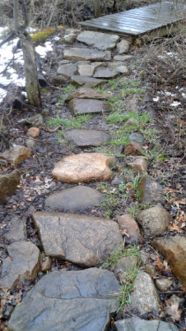 built up stepping stone trail in rockland town forest