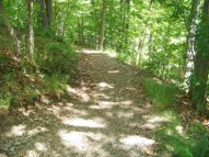 beginning descent of reversing falls trail in weymouth