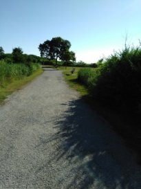 gravel hiking trail leads out to open grass field and views