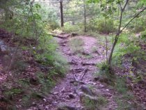 rocky area in Barnes Wildlife Sanctuary