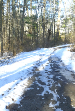 country road connecting the high school with middle school at melzar hatch reservation