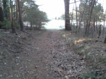 trail from parking to bog at ellis sanctuary
