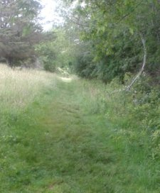 A trail cut through grass on Turkey Hill
