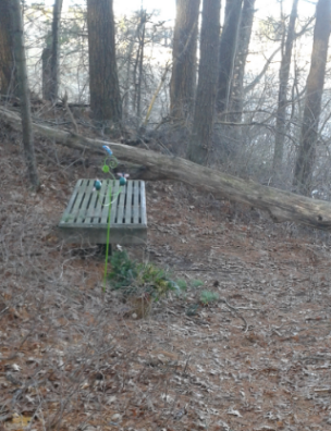 bench near the North River at Two Mile Farm in Marshfield