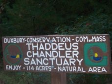 Thaddeus Chandler Sanctuary