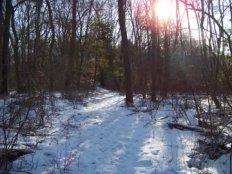 peaceful hike at mckenna marsh