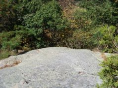 ledge in summer in great brewster woods
