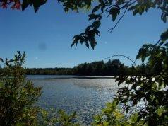 Indian Reservoir pond at Burrage Wildlife Management Area