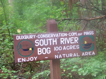 south river bogs trail head sign