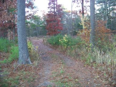 hiking trail near whitman hanson high school