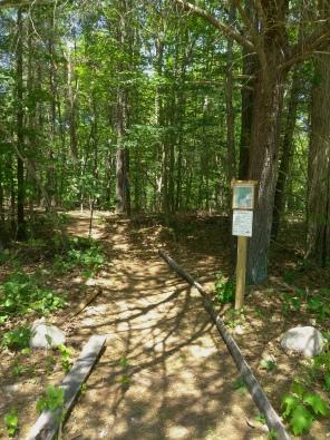 Twin Ponds Trail head on Abington Rockland line
