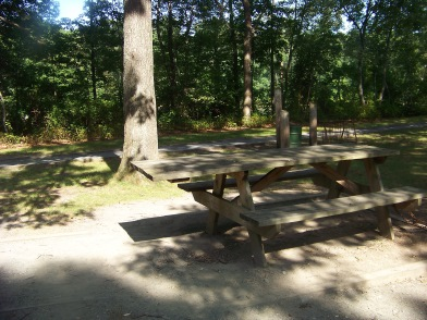 wheel chair accessible picnic table