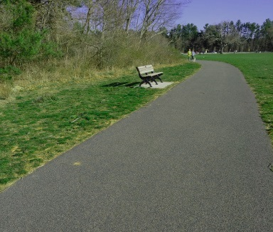 Plenty of benches to rest on along the walking trail at forge pond park.