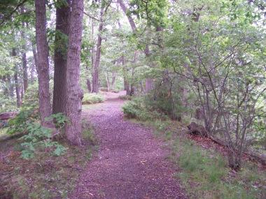 reversing falls trail great esker park