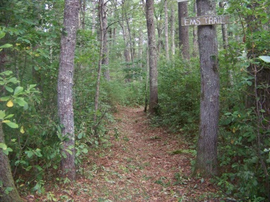 EMS Trail at Stetson Meadows in Norwell
