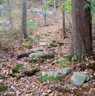 rocky area at eel river woods