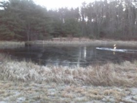 small pond near parking at crowell conservation