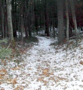 narrow alternate trail at two mile farm