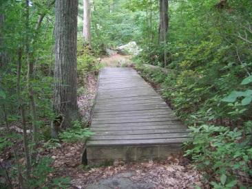 small bridge at triphammer pond