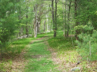 grassy trail with bench at willow brook farm