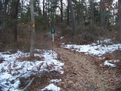 start of the great brewster woods trail