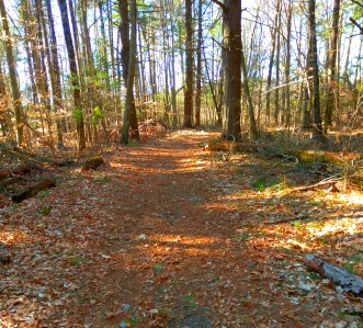 Loop section of the Rockland Fireworks Trail.
