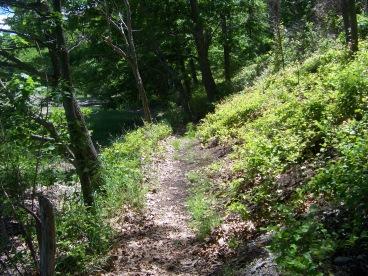 narrow woodland trail at great esker park