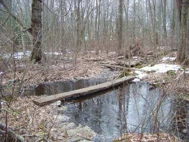 walkway over water in great brewster woods
