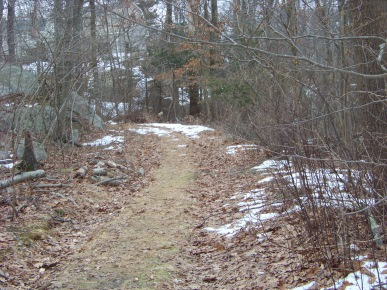 cart path used as an access to great brewster woods