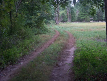river trail from picnic area at stetson meadows