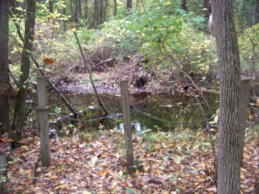 eel river viewing area in eel river woods in hingham
