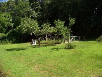 rockland town forest garden