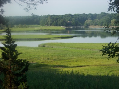 view of weir river estuary from weir woods