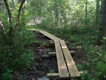 plank walk along winding trail at twin ponds trail