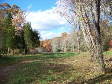 field in fall at willow brook farm