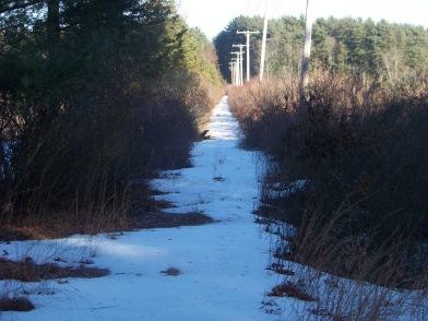 indian crossway through the cedar swamp