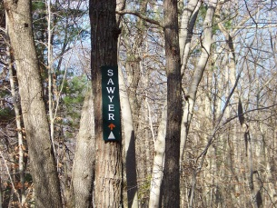 sawyer trail in holbrook