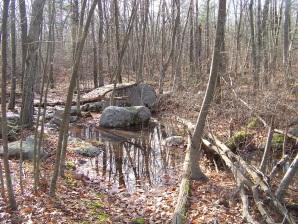 sawyer trail in water