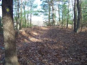 diman trail
