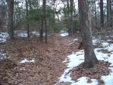 trail through great brewster woods