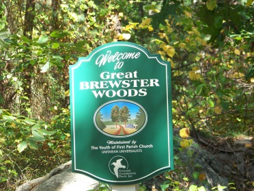 great brewster woods hiking trail